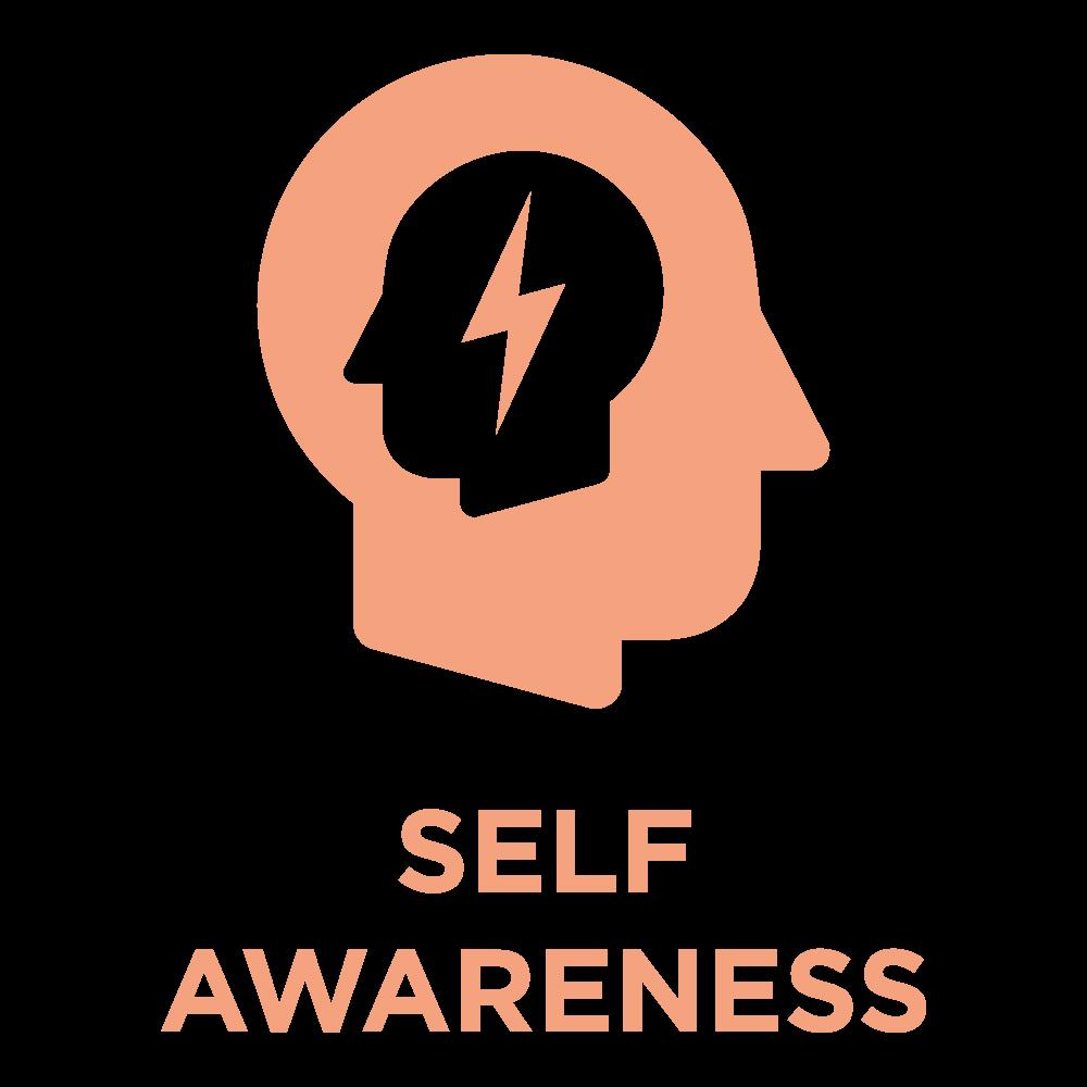 ttisi_eq_icon_SelfAwareness