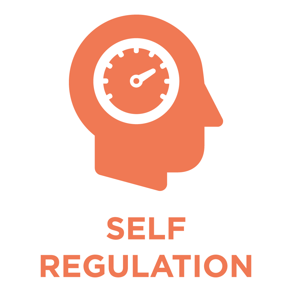 ttisi_eq_icon_SelfRegulation