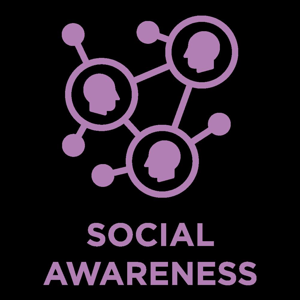 ttisi_eq_icon_SocialAwareness