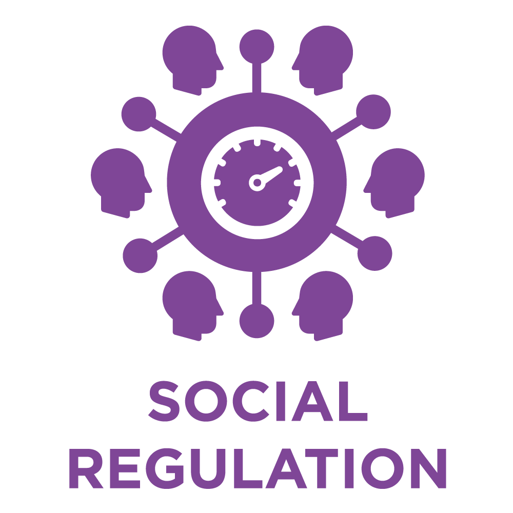 ttisi_eq_icon_SocialRegulation